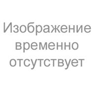 Ремкомплект DISA M52TU (OEM 11 61 1 440 049)